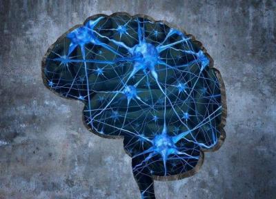 هفتمین مدرسه مغز و شناخت برای دانش آموزان پسر برگزار می گردد
